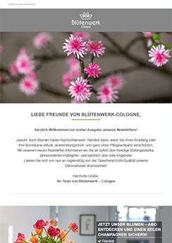 custom design example newsletter template